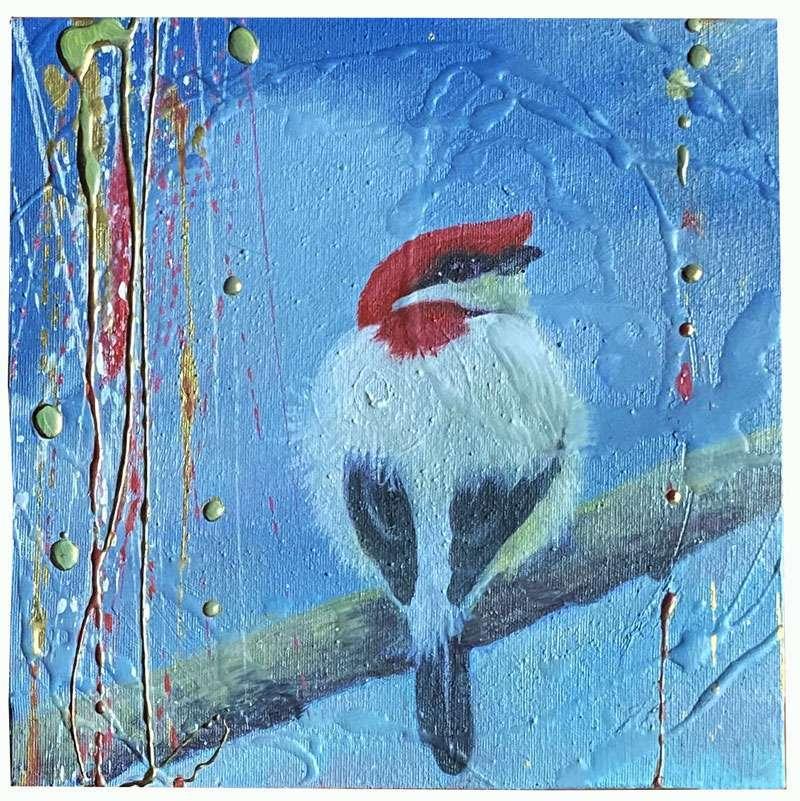 red-crested-simona-marziani